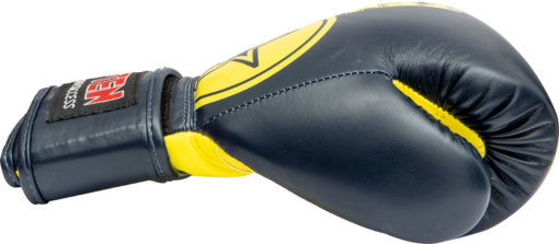 top-ten-boxing-gloves-kids-23461-blue-yellow side